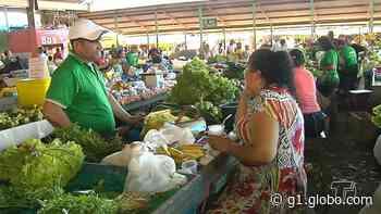 Para evitar aglomerações, feiras livres de Arcoverde são realizadas apenas no Cecora - G1