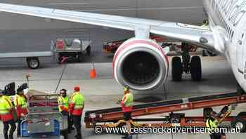 More SA baggage handlers have COVID-19 - Cessnock Advertiser