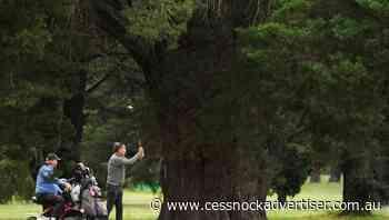 Vics only state to heed golf virus advice - Cessnock Advertiser