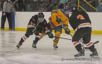 W-DC hands out postseason hockey awards - Wadena Pioneer Journal