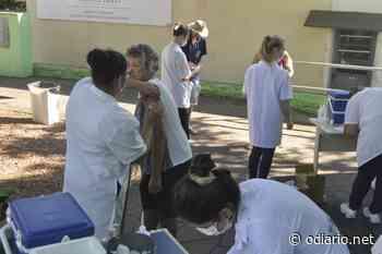 Ivoti recebe novo lote de vacinas contra a gripe - O Diário