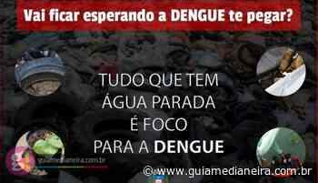 Medianeira: Epidemia de Dengue continua e tem mais de 700 casos confirmados no município - Guia Medianeira