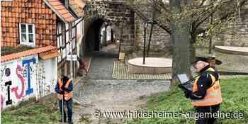 Es geht los: Hildesheim läutet Schönheitskur für Grünanlagen ein - www.hildesheimer-allgemeine.de