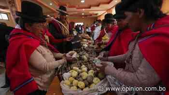 Comida de la ancestral Tiahuanaco queda registrada para impulsar el turismo - Opinión Bolivia