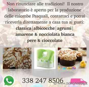 Arluno, Vivian's non si ferma mai: prenota la tua colomba pasquale - Ticino Notizie