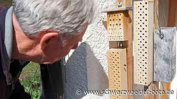 Hechingen: Den Garten jetzt naturnah gestalten - Hechingen - Schwarzwälder Bote