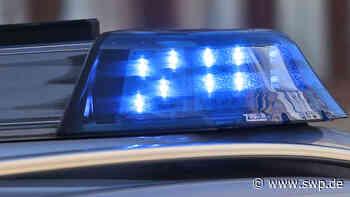 Verstoß gegen Corona-Verordnung in Hechingen: Vandalen verwüsten bei verbotener Party den Grillplatz - SWP