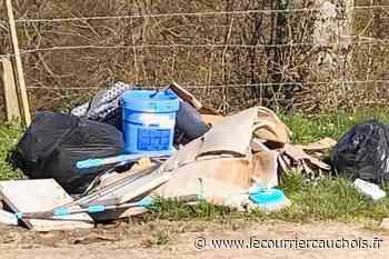 Pavilly. Un pollueur trahi par une ordonnance et une facture dans ses déchets - Le Courrier Cauchois