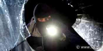 Zusammenhang vermutet - Zwei Männer nach Kellereinbrüchen in Markkleeberg festgenommen - Leipziger Volkszeitung