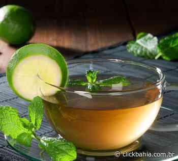 Aprenda a fazer chá de hortelã com limão, gengibre, canela e mais - Arial