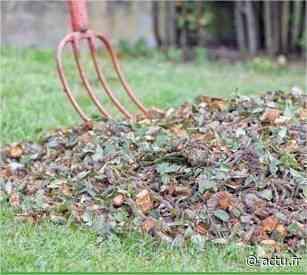 Val-d'Oise. Argenteuil - Bezons : collecte des déchets végétaux du 6 au 10 avril - actu.fr