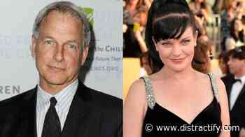 Mark Harmon and Pauley Perrette Drama Explained: Here's What Happened - Distractify