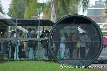 Passageiros se cuidam pra prevenir coronavírus nos ônibus de Curitiba - Tribuna do Paraná