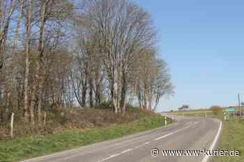 Stadt Montabaur: Baumfällarbeiten zwischen Himmelfeld und L318 - WW-Kurier - Internetzeitung für den Westerwaldkreis