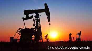Venda de campos onshore da Petrobras no Rio Grande de Norte é aprovada pela ANP - Click Petróleo e Gás