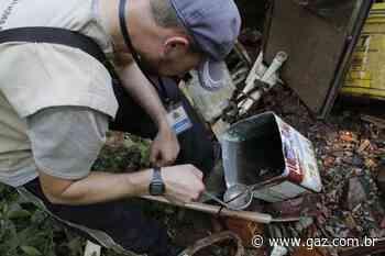 Momento requer cuidados com o mosquito da dengue em Santa Cruz - GAZ
