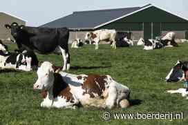 Nieuwsfoto's: het voorjaar barst los - Boerderij
