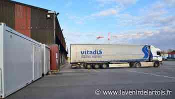 Saint-Laurent-Blangy : les routiers sont les bienvenus au marché aux bestiaux - L'Avenir de l'Artois
