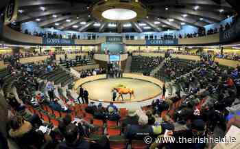 Goffs publishes new dates for major sales - The Irish Field