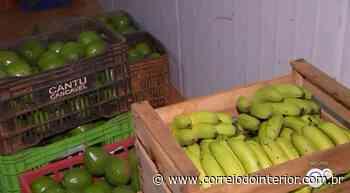 Produtores de alimentos doam legumes e frutas para entidades em Porto Feliz - Correio do Interior
