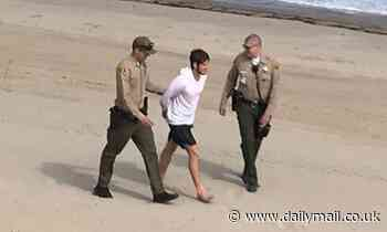 Video shows sheriff's deputies on boat chase down paddle boarder off Malibu after he defied closure