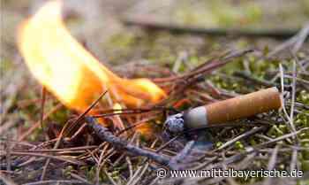 Zigarette löst Feuer in Waldstück aus - Region Schwandorf - Nachrichten - Mittelbayerische