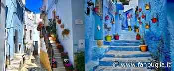Un'architetta rivela il legame del colore blu fra Casamassima e le città in Marocco - Fanpuglia