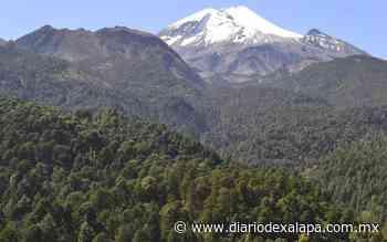 Desaparece jet; pudo haberse accidentado en la región de Perote - Diario de Xalapa