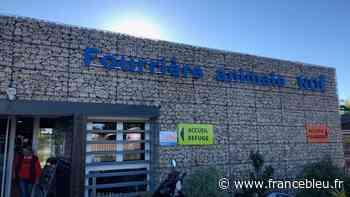 Coronavirus : La SPA de Montpellier lance un appel à dons - France Bleu