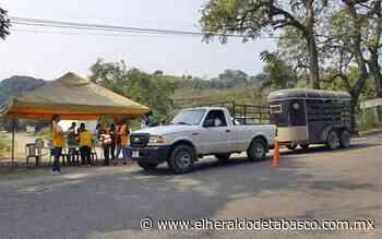 Intensifican operativos contra el coronavirus en Teapa - El Heraldo de Tabasco