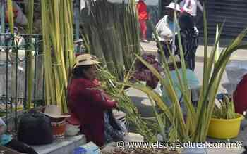 Negro panorama para artesanos de la palma en San Cristóbal Huichotitlán - El Sol de Toluca