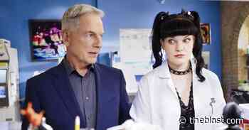 Pauley Perrette's Relationship Cooled With Mark Harmon After Dog Bite - The Blast