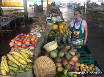 Juazeiro: Prefeitura libera reabertura de feiras e mercados em 'condições especiais' - Voz da Bahia