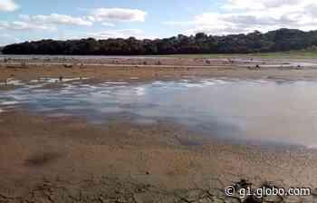 Represa de Alagados está com nível abaixo do normal em Ponta Grossa, diz Sanepar - G1