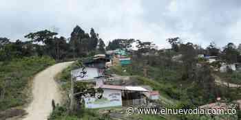Asesinaron a excombatiente de las Farc en Ataco - El Nuevo Dia (Colombia)