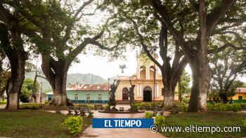 Temor por asesinato de desmovilizado en Ataco, Tolima - El Tiempo