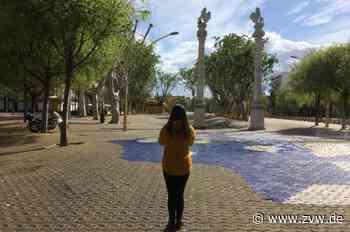 Schorndorf/Sevilla - Corona-Hausarrest über den Dächern von Sevilla - Zeitungsverlag Waiblingen