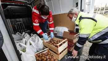 Casier, da lunedì saranno distribuiti i buoni spesa per l'acquisto di beni di prima necessità - TrevisoToday