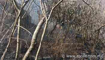 Incendio consume 15 hectáreas de cerro en San Miguel de Allende - Periódico Zócalo