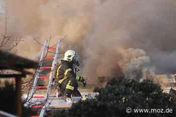Brand: Feuer zerstört Gartenhaus in Ahrensfelde - Märkische Onlinezeitung