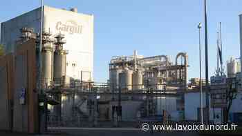 Grève à Cargill Haubourdin après un désaccord sur les primes de travail en temps de crise sanitaire - La Voix du Nord