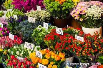 Kreis Neu-Ulm: Von Reifenwechsel bis Blumenverkauf – Verstöße gegen Ausgangsbeschränkung - BSAktuell