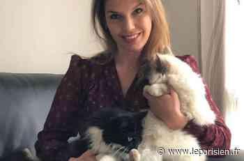 Le Plessis-Belleville : Sophie Delage veut un foyer pour tous les animaux - Le Parisien