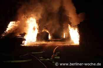 Großbrand in Wandlitz: Holzstapel gehen an der L100 in Flammen auf. - Berliner Woche
