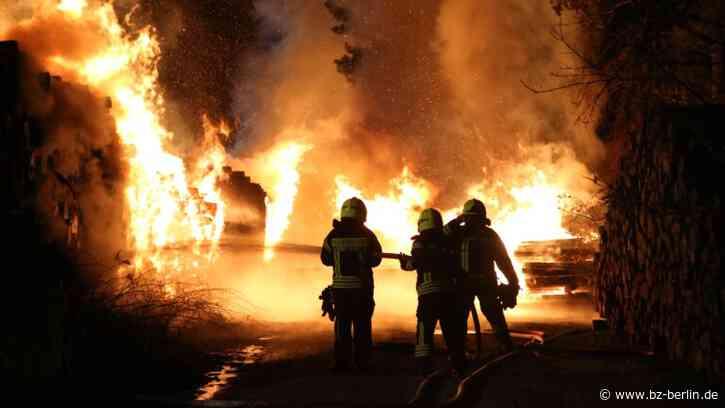 Baumstämme angezündet? Feuerwehr verhindert Waldbrand bei Wandlitz - B.Z. Berlin