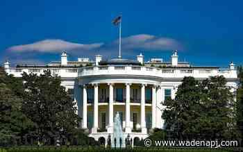 WATCH: White House coronavirus task force holds COVID-19 press briefing - Wadena Pioneer Journal