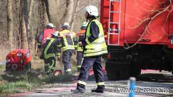 1,5 Hektar: Feuerwehr bekämpft Waldbrand in Kolkwitz - Lausitzer Rundschau