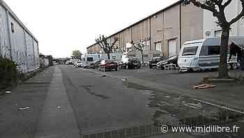Montpellier : des caravanes squattent le Parc Mure - Midi Libre
