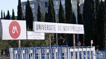 Coronavirus : télétravail pour les 49 000 étudiants de l'Université de Montpellier - actu.fr