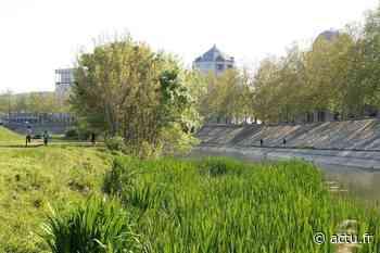 Montpellier : le Lez, paisible ce dimanche - actu.fr